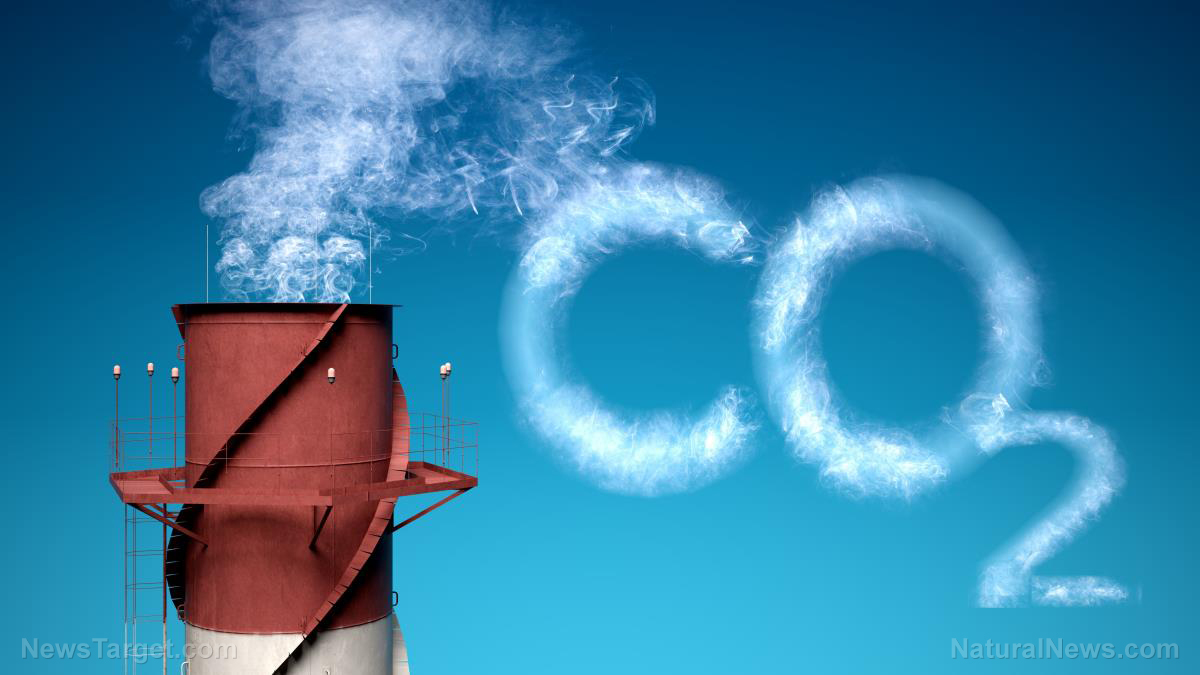 "Carbon dioxide ""pollutant"" myth totally DEBUNKED in must-see science video"